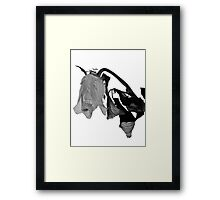 Spring Blooms With Flowers Dead II Framed Print