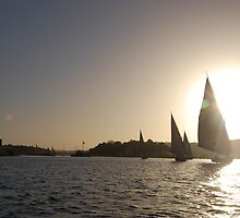 Felucca at Sunset by Jamie Shirlaw