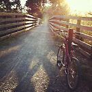 Bicycle Dawn by WendyJC