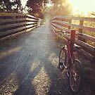 Bicycle Dawn by WendyJC