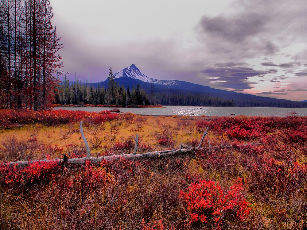 Mt Washington Fall Colors by Charles & Patricia   Harkins ~ Picture Oregon