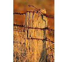 """Bush Boundary"" Photographic Print"