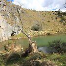 Blue Water Holes on Long Plain Road Kosiosko Nat Park NSW   NO.2   by julie anne  grattan