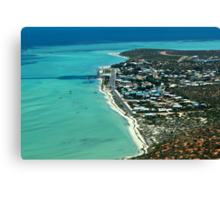 FROM THE AIR Canvas Print