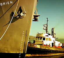 SS Jeremiah O'Brien by Stephen Maxwell