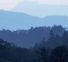 Lakeland Layers by a h