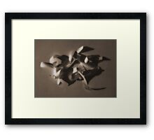 Light and Shade Framed Print
