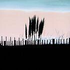Toitoi Sunset by Karen Lewis