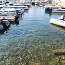 Clear Waters Path, The Port of Giglio 2011 by ArleneMartine