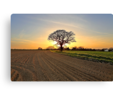 A Sunset Silhouette Canvas Print