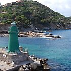 The Green lighthouse, Port of Giglio, 2010 by ArleneMartine