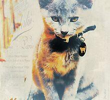 French Kitten by Karen Lewis