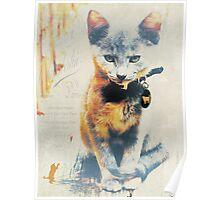 French Kitten Poster