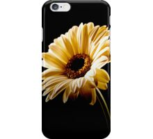 Floral Highlights iPhone Case/Skin