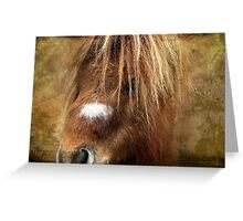 Kerry Bog Pony Greeting Card
