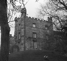 Lumley Castle by HelliBerry