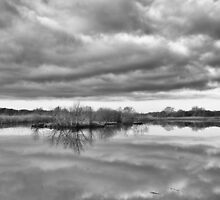 Reflections on the Broads by Geoimages