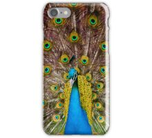 Expecting To Fly iPhone Case/Skin