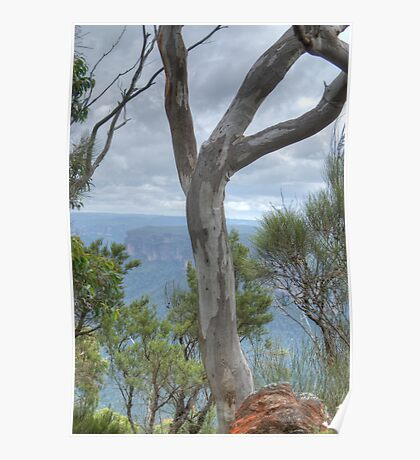 Blue Gum View, Blackheath, NSW, Australia Poster