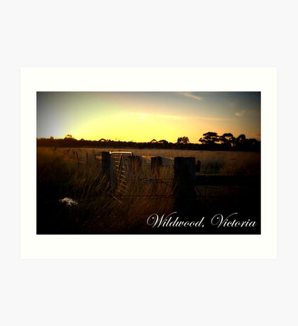 Wildwood Country, Victoria Art Print