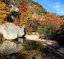 Lost Maples Reflection by Judy Vincent