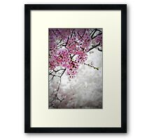 Cherry Dreams Framed Print