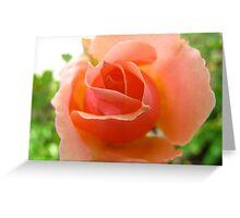 Expressive Peach Greeting Card