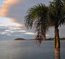 Morning in Paradise  by John  Kapusta