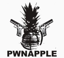 The Pwnapple by Pwnapple