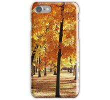 Autumn in New York  iPhone Case/Skin