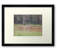 Rubyvale Qld rising flood waters Framed Print