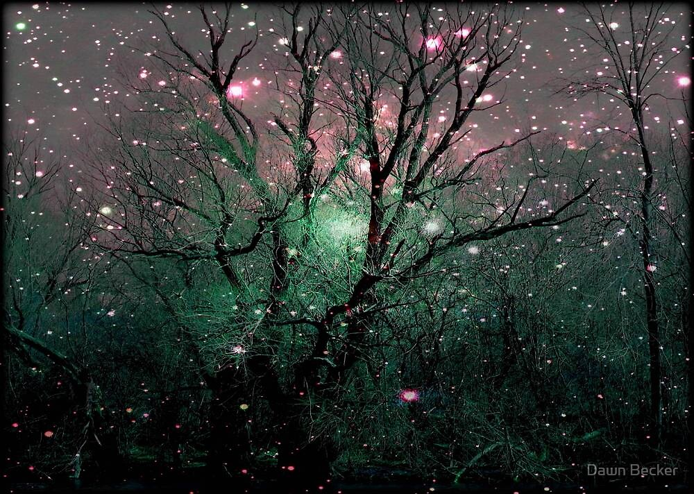 Forest Magic © by Dawn M. Becker