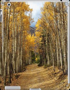 Golden Road - 2 by Ken Fleming