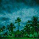 Paradise storm by Andrew  MCKENZIE