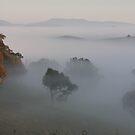 Fog in the Valley  by julie anne  grattan