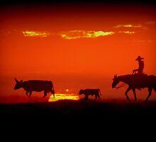 Home on the Range by Kimberly Chadwick