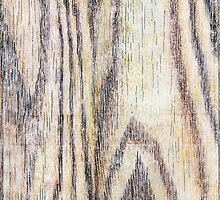 """Wood Grain Drawing"" by Micah Samter"