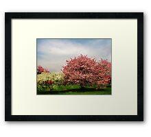 Spring-Arie den Boer Crab Apple Arboretum Framed Print