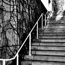 """Stairs"" B&W by mls0606"