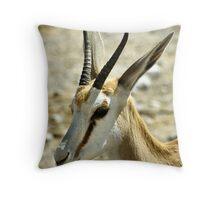 Springbok Portrait Throw Pillow