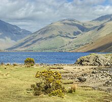 Wastwater Shoreline by Jamie  Green