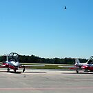 """Canadian Snowbirds 03"" by mls0606"