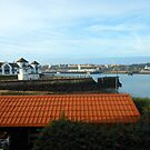 View of River Tyne from Little Haven Hotel by kathrynsgallery