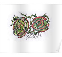 Money Roses and Spider web Poster