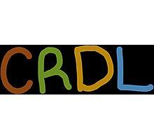 Team CRDL Photographic Print