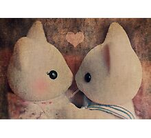 Kitty Kisses Photographic Print