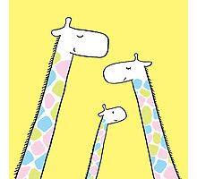 Giraffe family Photographic Print