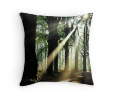 Lightthought 100 Throw Pillow