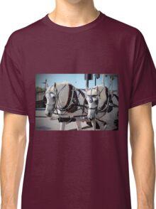 Percheron Draft Horses Classic T-Shirt