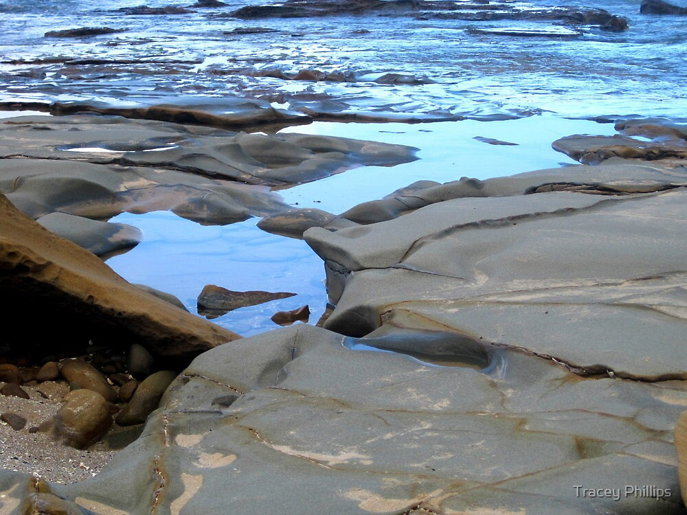 Rock Art 11 by Tracey Phillips